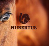 hubertus logo branding id key visual premium